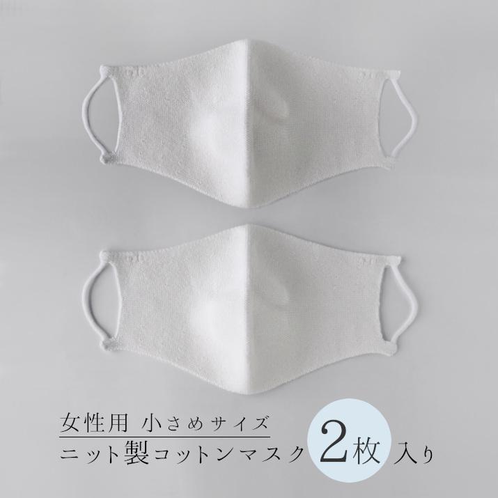 マスク2枚入り女性用小さめサイズ
